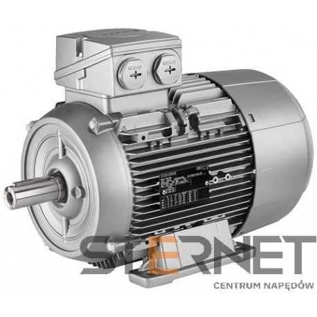 Silnik trójfazowy prod. Siemens, Moc: 0,75kW, Prędkość: 3000obr/min, Napięcie: 230/400V (Δ/Y), 50Hz, Wielkość: 80M, Wykonanie mechaniczne: łapowy (IMB3), Klasa izolacji F, IP55, Klasa sprawności IE3