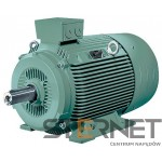 LOW-VOLTG.SQUIRREL-CAGE MOTOR IP55, 2POLE *SIZE 180M* THERM.CL.155(F) OPTIMIZED FOR IE2 * CAST-IRON ENCL. 3 AC 50HZ 400VΔ/690VY * 22 KW 3 AC 60HZ 460VD * 24,5 KW 3 AC 60HZ 460VD * 30 HP IM B 3, IM B 6, IM B 7, IM B 8, IM V 5 W/O CANOPY, IM V 6