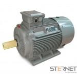 SILNIK ELEKTRYCZNY 3-fazowy, marki STARK, Moc 200kW, 2900obr/min, 400VD/690VY, wykonanie B3, Wielkość mech. 315, Sprawność IE3
